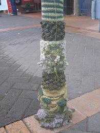 Woolly Poles